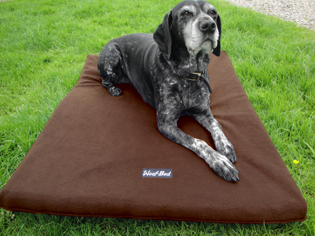 Dog Bed Woof Bed Pet Bedding